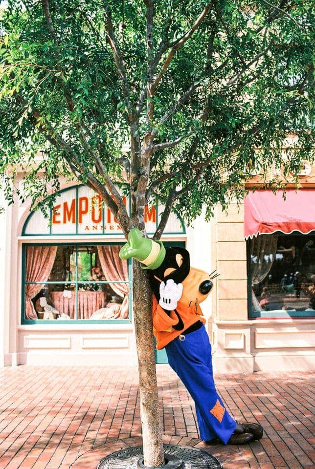Disneyland Goofy Film Photography